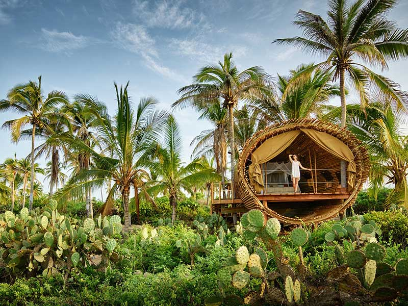 treehouse in Mexico is made with sustainable bamboo