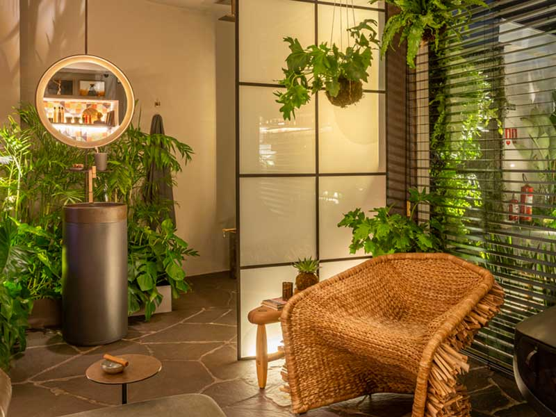 گیاهان مقاوم به فضای کم نور